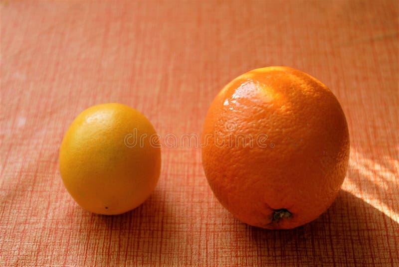Vida do destilador da laranja e do limão imagem de stock