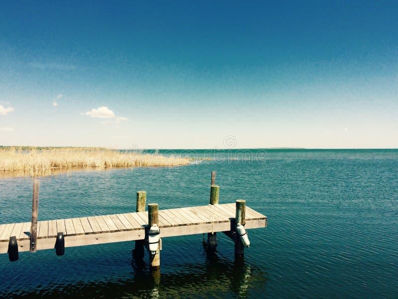 Vida do lago fotografia de stock royalty free