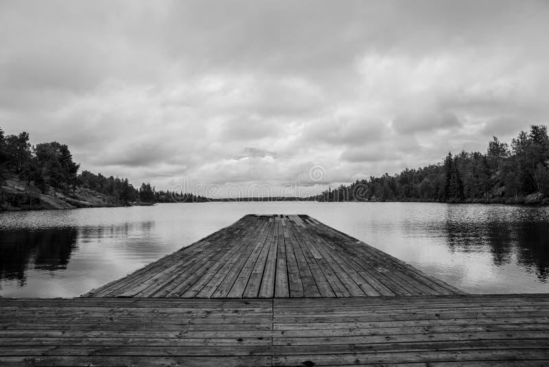 Vida do lago imagem de stock
