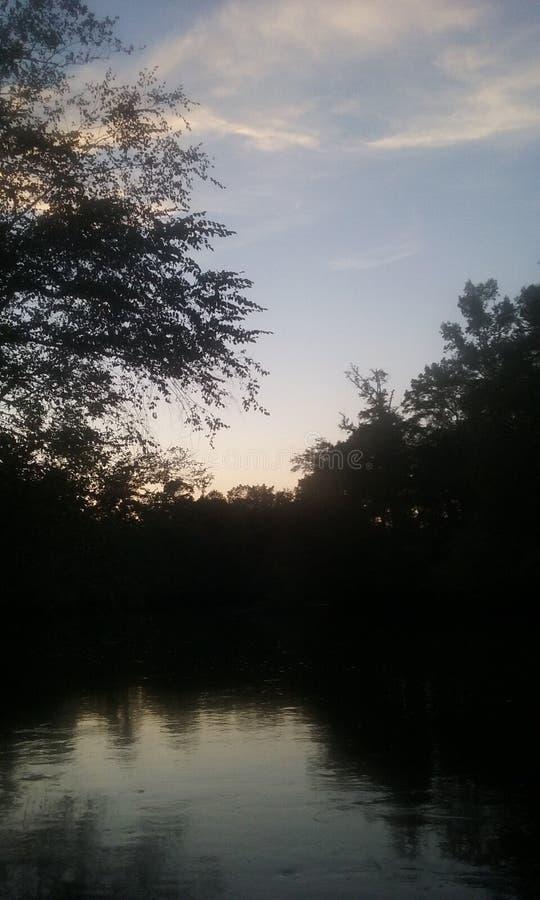 Vida do rio fotografia de stock