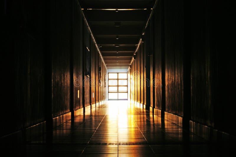 A vida está cheia da luz do sol fotografia de stock royalty free
