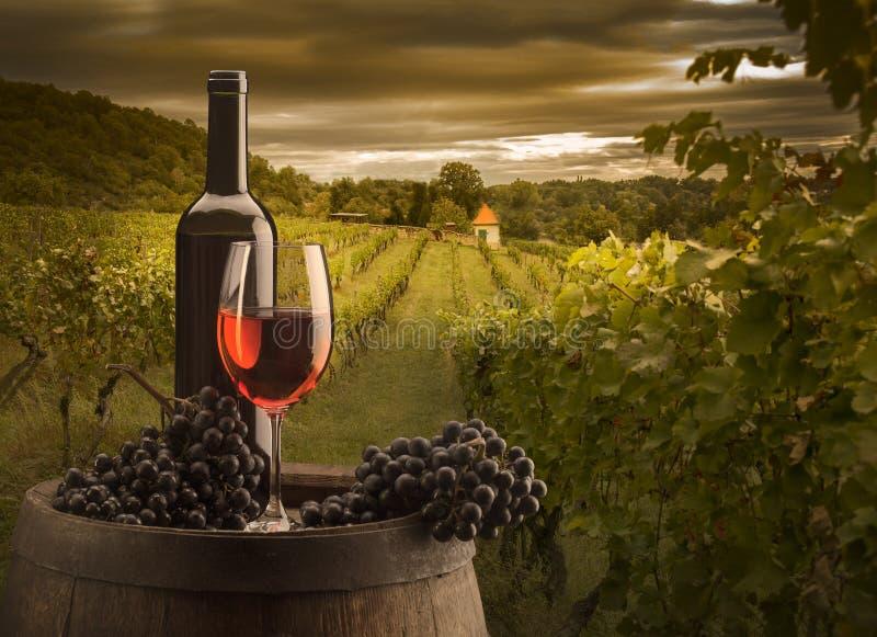 Vida fija con vino tinto y barril de madera en los viñedos fotografía de archivo libre de regalías