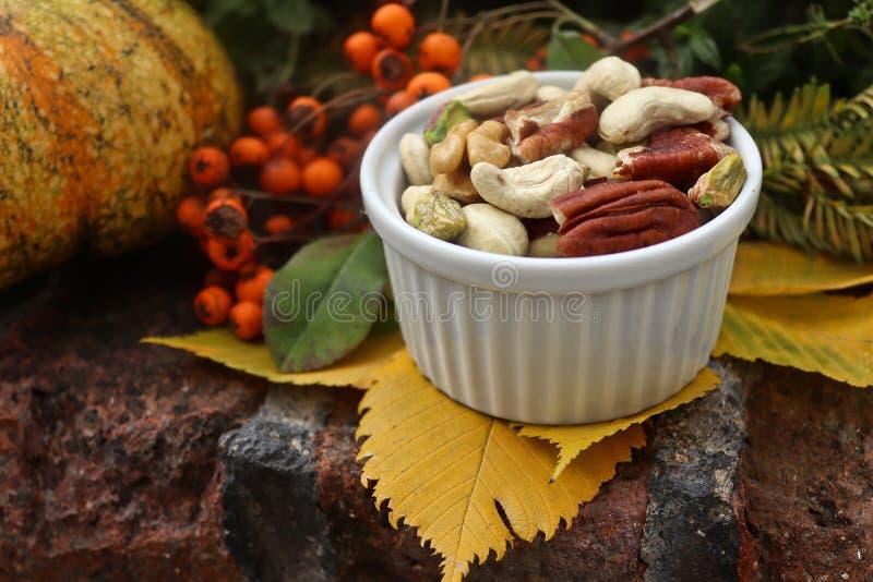 Vida inmóvil colorida del otoño con las hojas y las nueces fotos de archivo libres de regalías