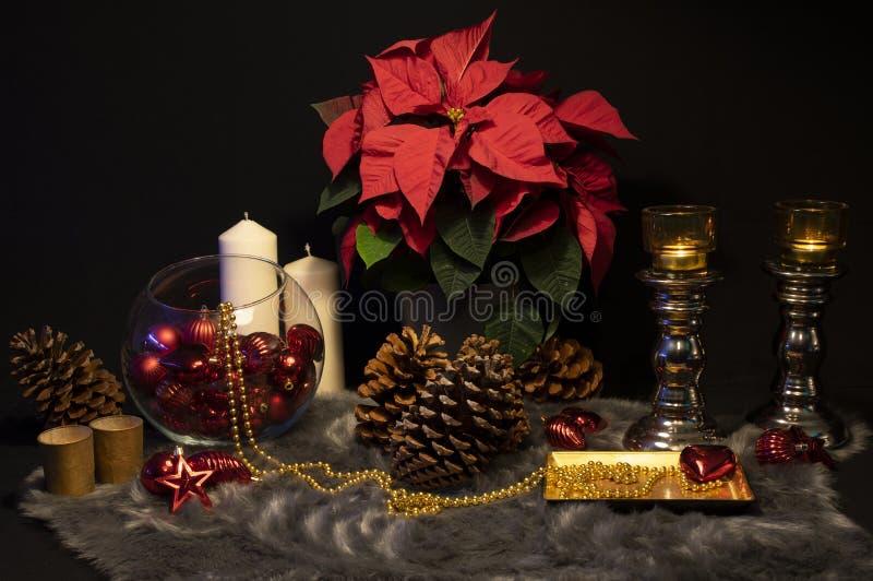 Vida inmóvil de la Navidad | Composición de la pieza central de la Navidad fotografía de archivo libre de regalías