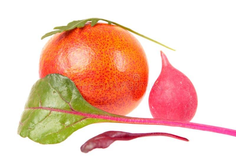 Vida inmóvil de Minimalistic con la combinación inesperada de naranja de sangre, de rábano rosado, de cardo fresco y de hoja del  fotografía de archivo libre de regalías