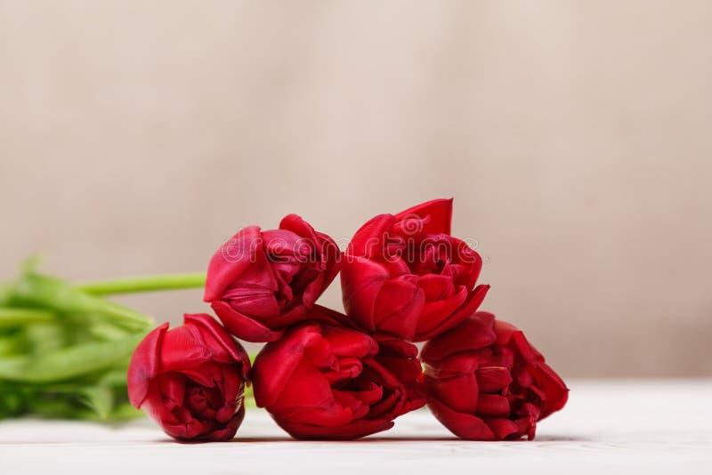 Vida inmóvil del vintage con un ramo de la primavera de tulipanes El concepto del día de madre, el día de las mujeres Adorne el h fotos de archivo