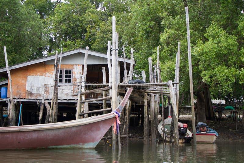 Vida marinha de Tailândia fotos de stock royalty free
