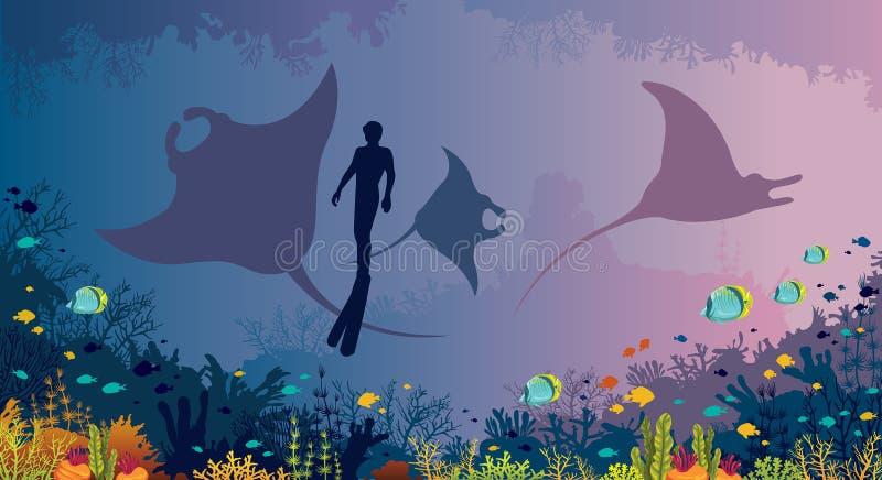 Vida marinha subaquática - mantas, recife de corais, peixes, freediver, ilustração do vetor