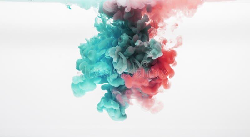 Vida na fotografia aquosa das cores imagem de stock royalty free