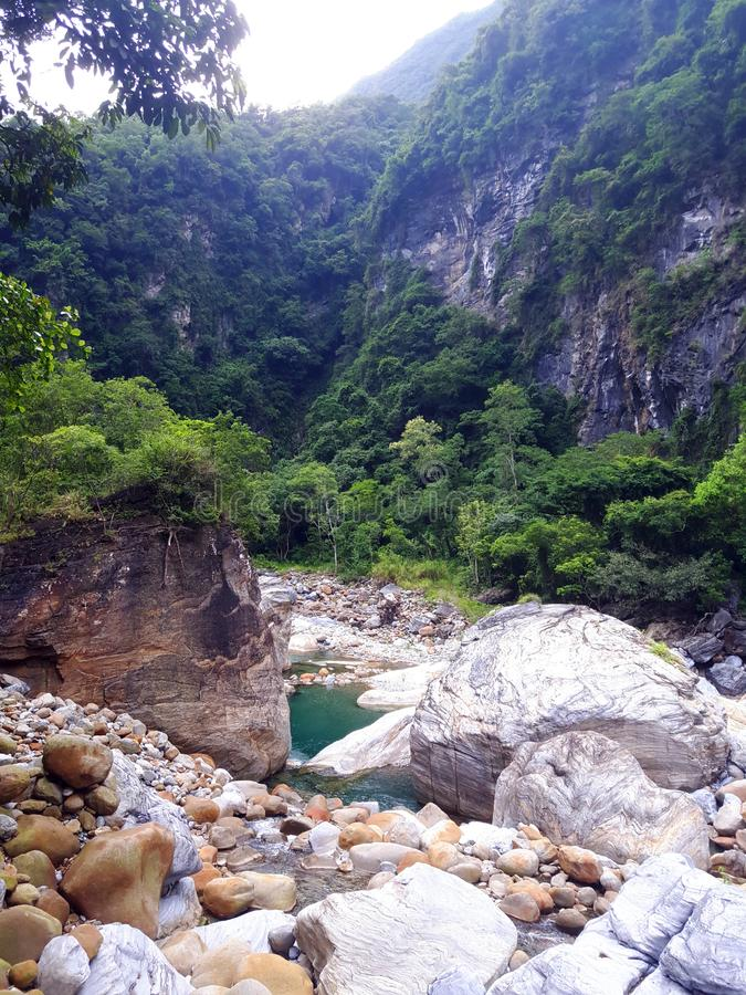 vida na ilha de Formosa fotografia de stock royalty free