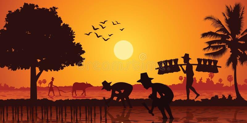 Vida no campo do arroz da planta do fazendeiro de Ásia quando um homem levar a plântula do arroz e um outro campo do arado pelo b ilustração stock