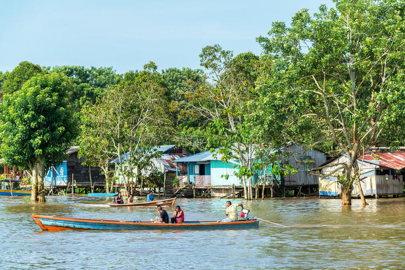 Vida no Rio Amazonas imagem de stock