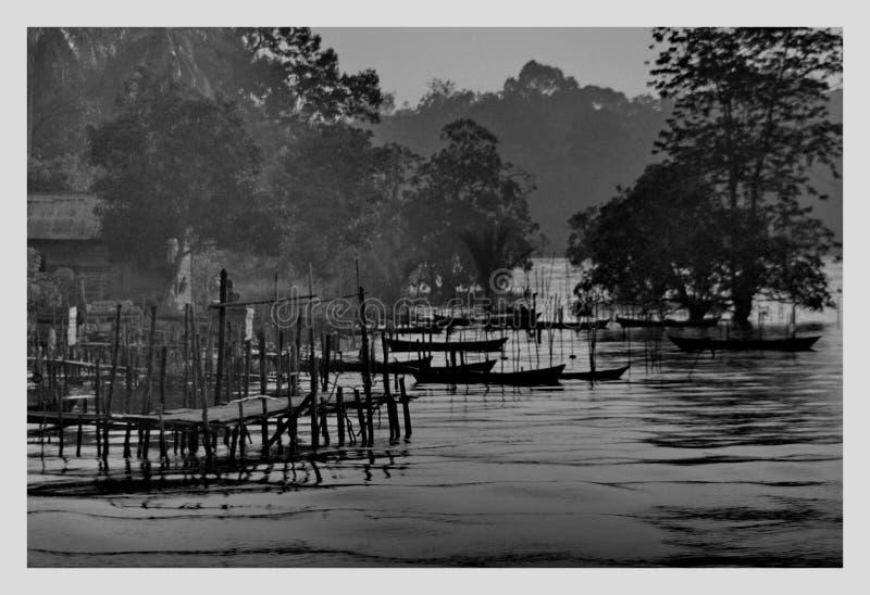 Vida no rio de Siak foto de stock royalty free