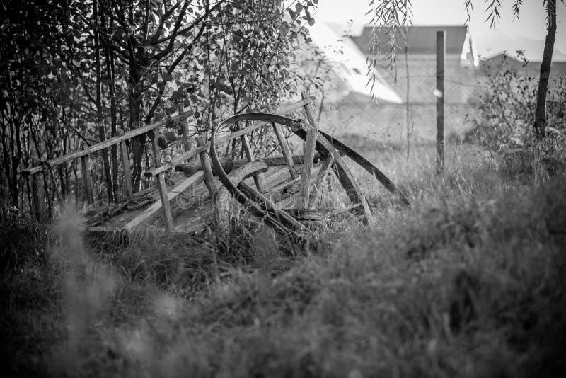 Vida preto e branco foto de stock