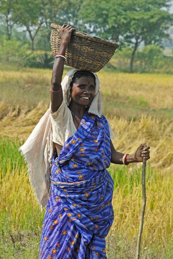 Vida rural en la India fotos de archivo
