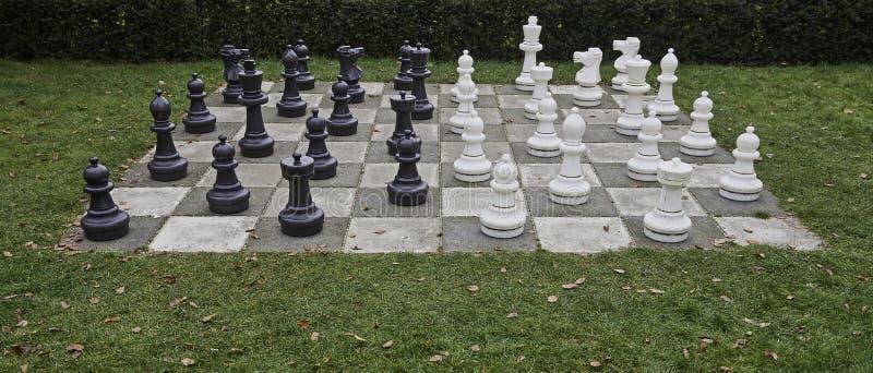 Vida - tabuleiro de xadrez e partes do tamanho fotografia de stock royalty free