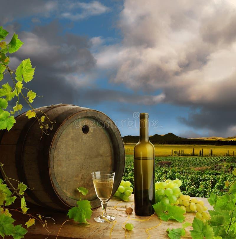 Vida todavía del vino blanco con el viñedo imagen de archivo