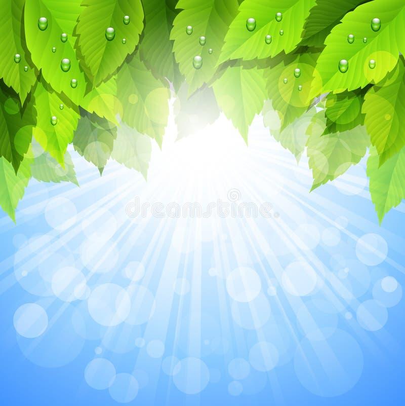 Vida verde de Eco ilustração do vetor