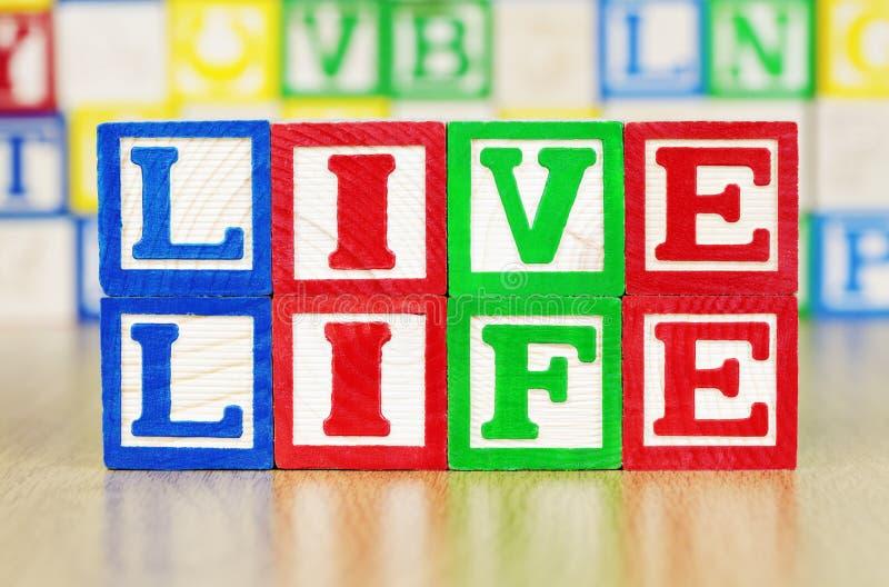Vida viva deletreada hacia fuera en bloques huecos del alfabeto imagenes de archivo