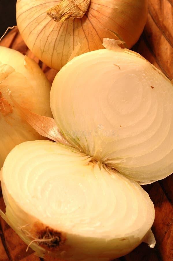 Free Vidalia Onions 10 Royalty Free Stock Photography - 474617