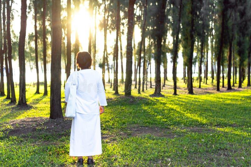 Vidas de la abuela por los ocho preceptos budistas Mujer mayor que hace buenas cosas para crear las karmas positivas para sí mism fotografía de archivo libre de regalías