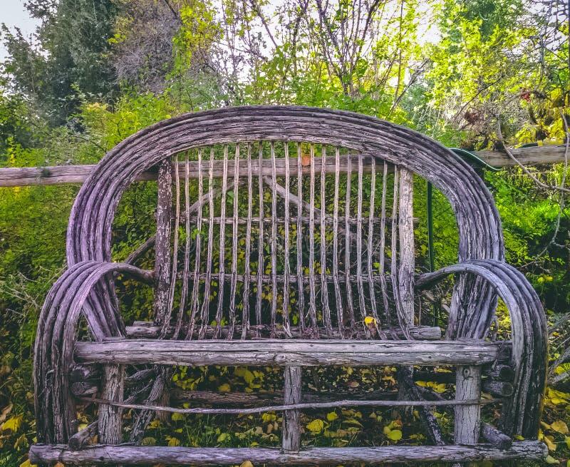 Vide- bänk i trädgård royaltyfri foto