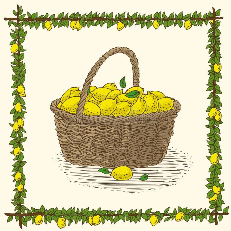 Vide- korg med mogna gula citroner vektor illustrationer