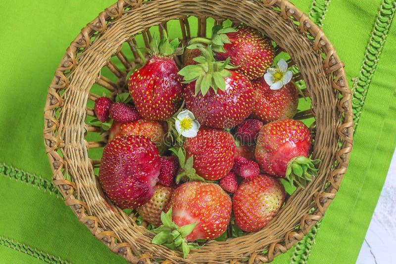 Vide- korg med organiska jordgubbar på grön servett royaltyfria bilder