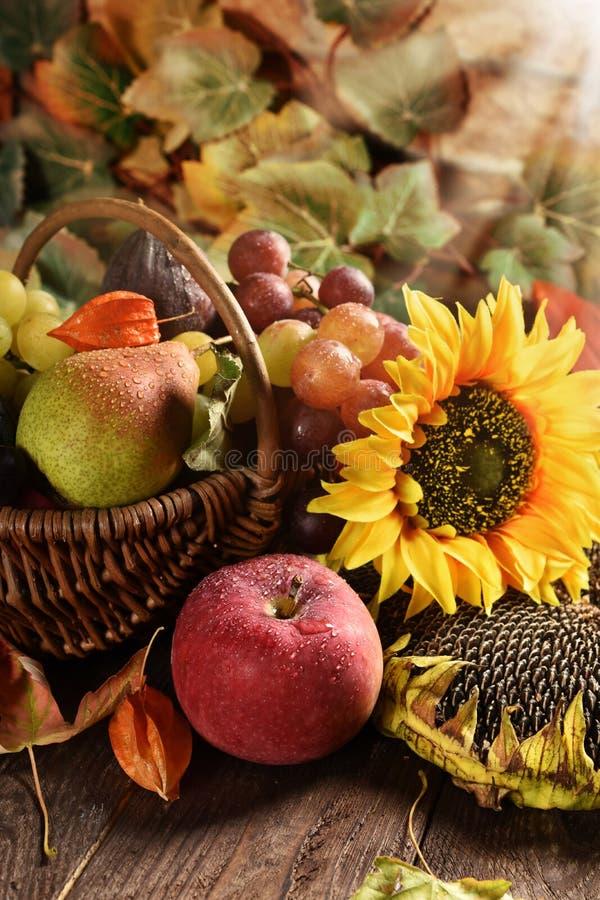 Vide- korg mycket av höstfrukter royaltyfria bilder