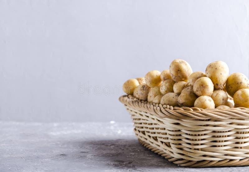 Vide- korg mycket av nya vårpotatisar Rå nya potatisar i behållaren som göras av styva fibrer på den gråa yttersidan mot grå färg royaltyfria foton