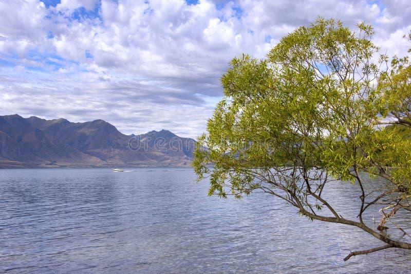 Vide på sjön Wakatipu, nära Glenorchy, NZ royaltyfri bild