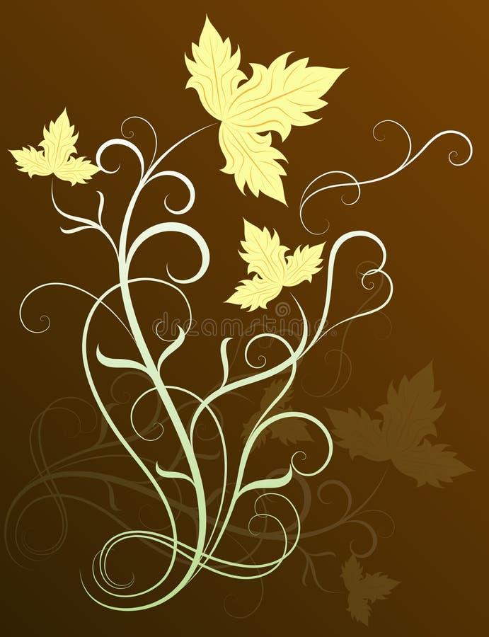 A videira sae do elemento floral ilustração stock