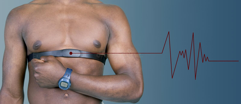 Video di frequenza cardiaca con l'impulso immagini stock libere da diritti