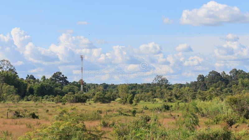 Video torre del telefono cellulare di Hyperlapse fotografie stock
