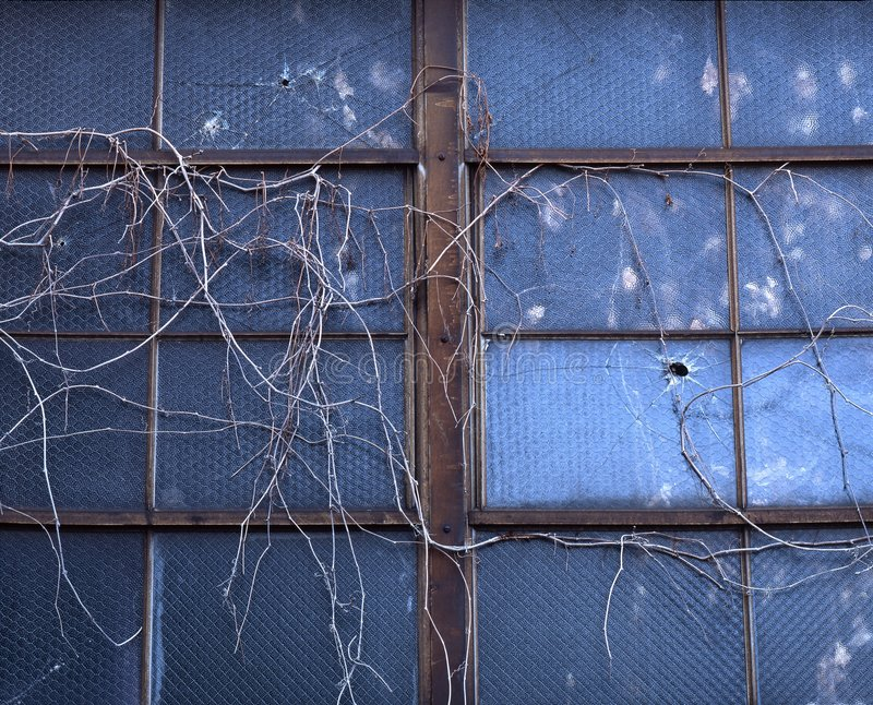 Vides de la ventana imágenes de archivo libres de regalías