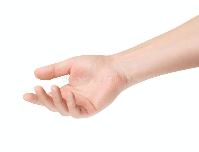 Videz la main mâle ouverte photographie stock
