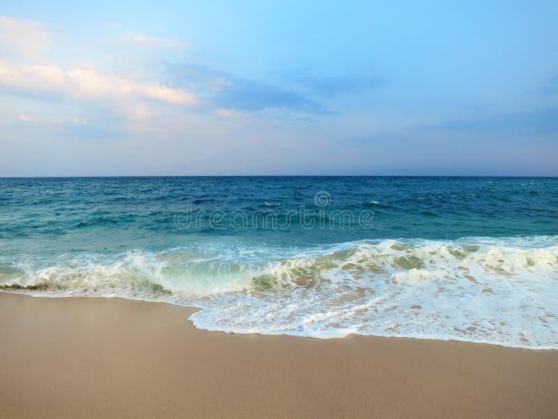 Videz la plage propre avec des paumes, Mirissa, Sri Lanka photographie stock