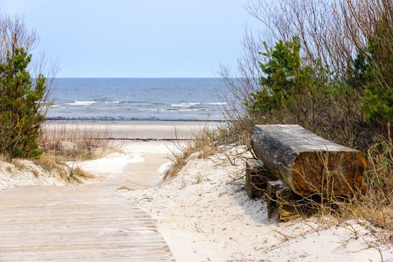 Videz le banc en bois près de la mer baltique dans Jurmala, Lettonie photographie stock libre de droits
