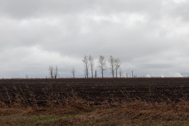 Videz le champ labouré photo libre de droits