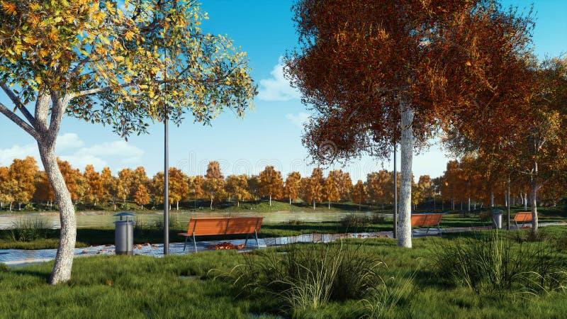 Videz les bancs et les arbres sur la voie en parc d'automne photos libres de droits