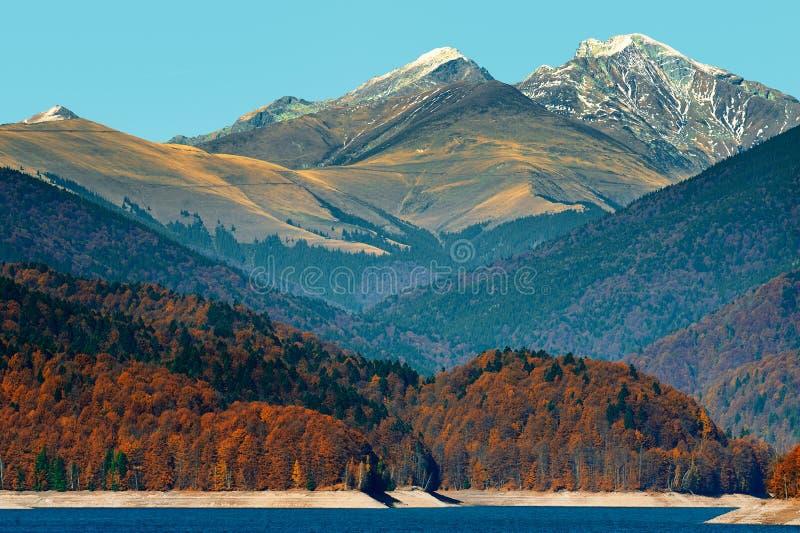 Vidraru lake royaltyfri foto
