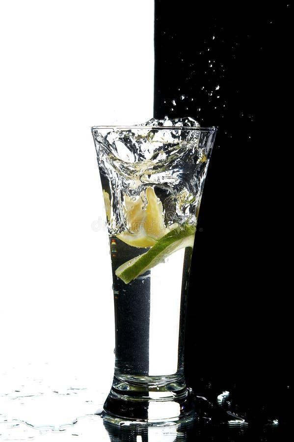 Vidrio con agua y el limón imagen de archivo