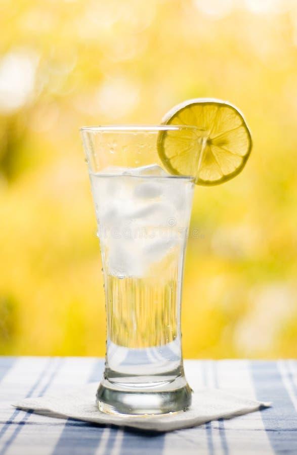 Vidrio con el limón y el hielo de agua foto de archivo libre de regalías
