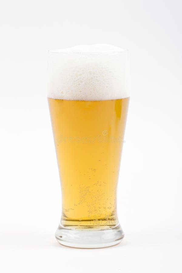 Vidrio De Cerveza Imagen de archivo libre de regalías