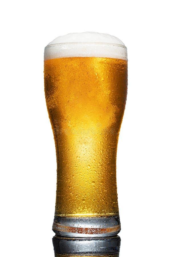 Vidrio de cerveza aislado sobre fondo blanco imagen de archivo libre de regalías