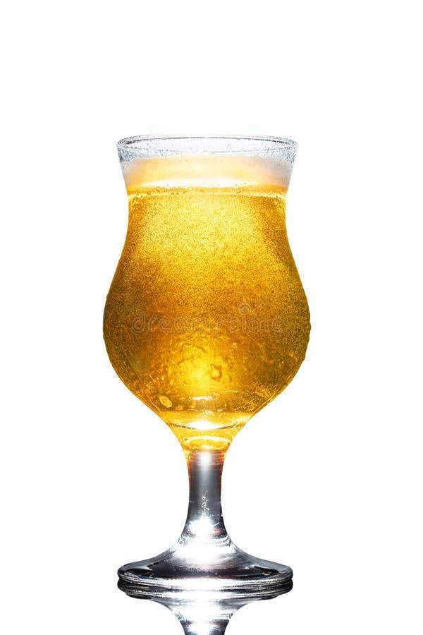 Vidrio de cerveza aislado sobre fondo blanco fotos de archivo libres de regalías