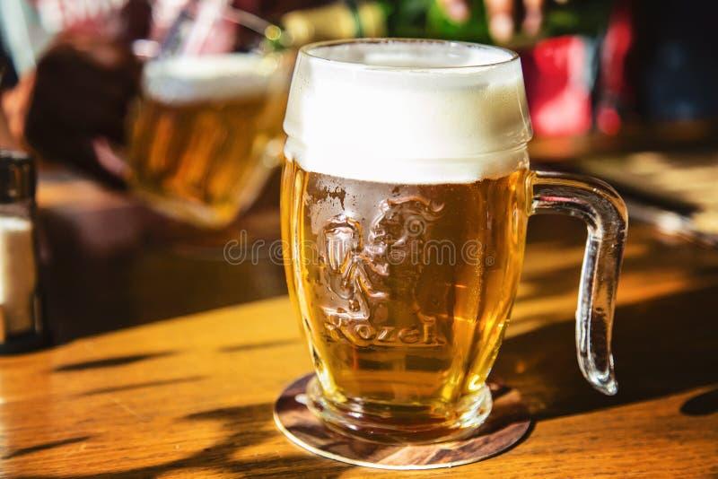 Vidrio de cerveza checa sin filtro Kozel imagen de archivo libre de regalías