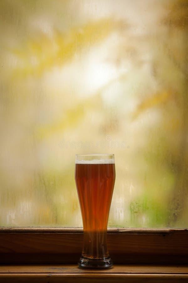 Vidrio de cerveza del otoño imagenes de archivo