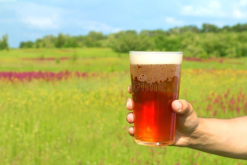 Vidrio de cerveza en la mano foto de archivo