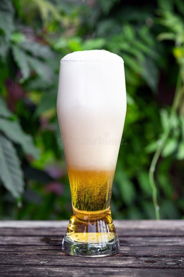 Vidrio de cerveza fría en la tabla de madera en jardín con el fondo verde imagen de archivo